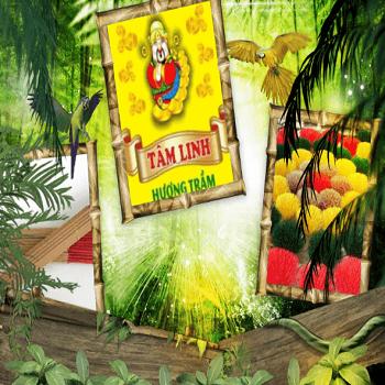 Hương sạch Tâm Linh giữ vững vị trí số 1 thị trường hương sạch